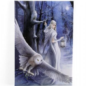 Anne Stokes  Midnight Messenger- fridge magnet